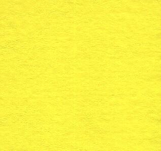 amarillopatito.jpg